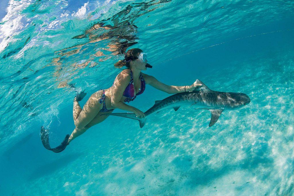 Snorkeling off Bimini