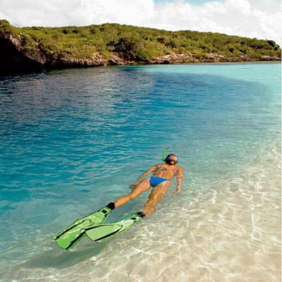 Snorkeling in the Virgin Isles