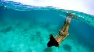 Snorkeling Shark Ray Ally Belize