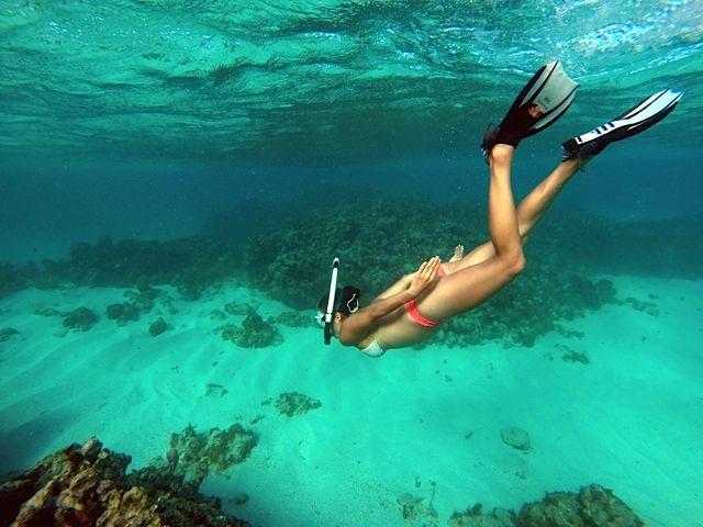 Snorkeling the waters of Antigua